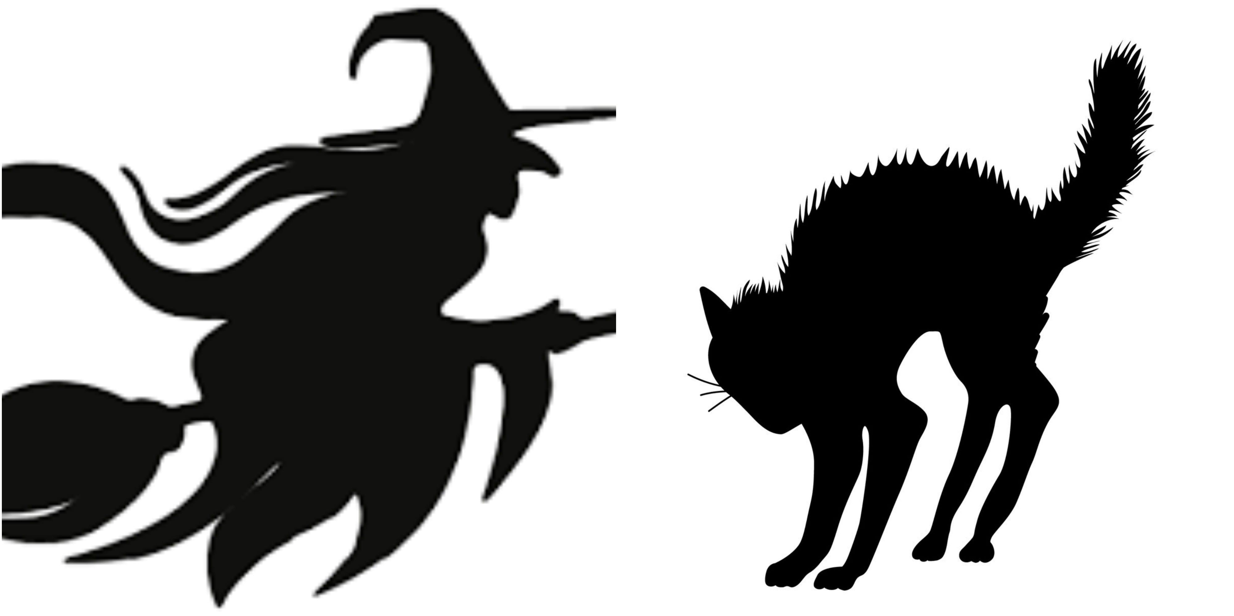 HalloweenWitchCAt